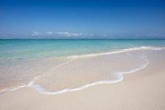 Tropical Shoreline Royalty Free Stock Photo