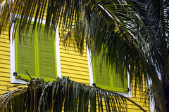 Tropical shutters. And palm tree  Bahamas background Royalty Free Stock Images