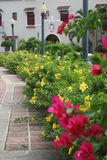 Tropical Sidewalk Landscaping. Exterior of a spanish style home with lush landscaping along the sidewalk in Ponce, Puerto Rico USA stock photography