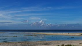 Tropical Siquijor beach. A very blue morning clip from Siquijor Island white sand beaches stock video footage