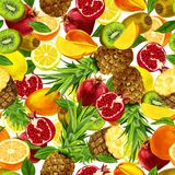 Tropical sliced fruits seamless background Royalty Free Stock Images