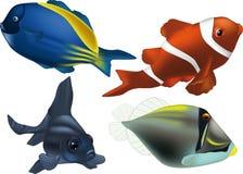 Tropical small fish Stock Photos