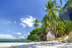Tropical solitude Royalty Free Stock Images