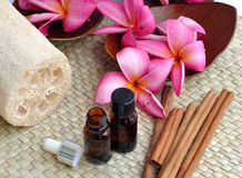 Tropical spa. This is a conceptual of tropical spa therapy with some cinnamon,plumeria flowers and a liquid spa bottles stock image