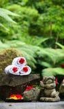 Tropical spa Royalty Free Stock Photos