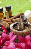Tropical spa and aromatherapy. Tropical spa treatment and aromatherapy royalty free stock photography