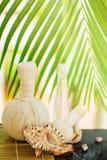 Tropical spa concept royalty-vrije stock foto