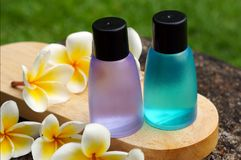 Tropical spa concept. With plumeria flowers Stock Photos
