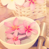 Tropical spa with Frangipani flowers. Stock Photos