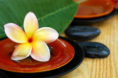 Tropical spa icons. Tropical frangipani, therapy stones and scented water Stock Photos