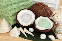 Tropical Spa Massage Royalty Free Stock Photos