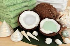 Tropical Spa Massage Royalty Free Stock Photos