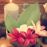 Tropical spa met Frangipani-bloemen royalty-vrije stock afbeeldingen