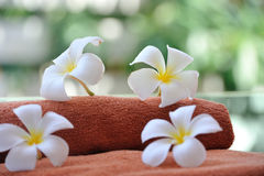 Tropical spa Stock Images