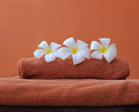 Tropical spa Stock Photography