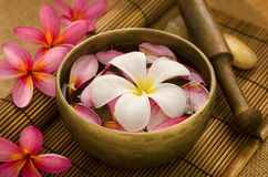 Tropical spa retreat Stock Photo