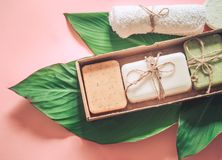 Tropical spa samenstelling Royalty-vrije Stock Foto