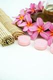 Tropical spa setting on white background Stock Photos