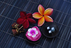 Tropical Spa Therapy. Concept on dark background Royalty Free Stock Photo