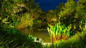 Tropical spa toevlucht in Phuket, Thailand - reis en toerisme Mooi landschap op gebied van hotel stock foto's