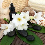 Tropical Spa Treatment Stock Photography