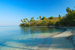 Tropical spot in the caribbean. Tropical scene of a beach in the caribbean island of Puerto Rico Stock Photos