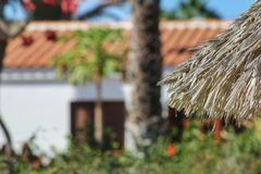 Tropical spot in south Europe at holiday resort. Summer vacations Royalty Free Stock Images