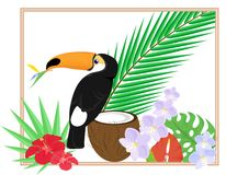 Tropical still life Royalty Free Stock Photography