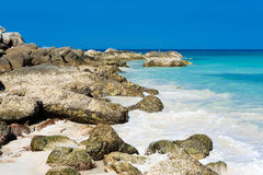 Tropical stones beach. Phuket island. Royalty Free Stock Photo
