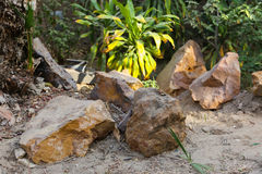 Tropical Stones at the gardens Stock Image