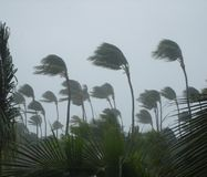 Tropical storm Royalty Free Stock Photo