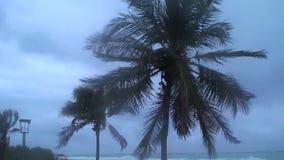 Tropical storm Aruba island in the caribbean stock footage