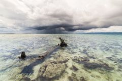 Tropical storm over transparent sea Royalty Free Stock Photo