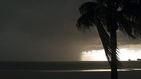 Tropical Storm stock video footage