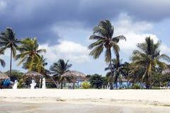 Tropical storm warning. stock photo