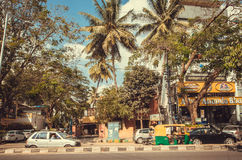 Tropical street with palm trees and autos on busy road Stock Image
