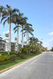 Tropical street. The scenery of street in Sanya,Hainan,China stock image