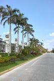 Tropical street Stock Image