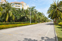 Tropical street. The scenery of street in Sanya,Hainan,China stock photo