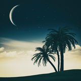 Tropical summer Royalty Free Stock Images