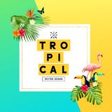 Tropical Summer Background Design Stock Image