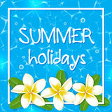 Tropical summer background Stock Image
