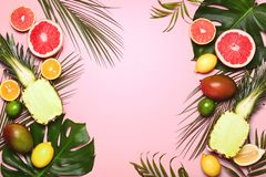 Tropical summer background with various tropical fruits royalty free stock photo