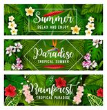 Tropical summer banner of palm leaf and flower. Tropical summer holiday banner of exotic palm leaf and flower. Jungle monstera, fern and fan palm green foliage Royalty Free Stock Photo