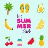Tropical summer beach decoration icon set Royalty Free Stock Photo