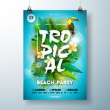 Tropical Summer Beach Party Flyer Design with flower, palm leaves and toucan bird on blue background. Vector Summer. Celebration Design template with nature stock illustration
