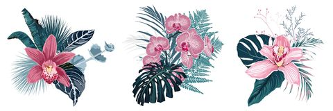 Tropical summer bouquet with palm leaves and exotic flowers. Pink flowers composition isolated on white background stock illustration