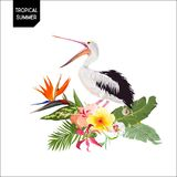 Tropical Summer Design with Pelican Bird and Exotic Flowers. Waterbird with Tropic Plants and Palm Leaves for T-shirt. Print. Vector illustration Royalty Free Stock Photo