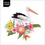 Tropical Summer Design with Pelican Bird and Exotic Flowers. Waterbird with Tropic Plants and Palm Leaves for T-shirt. Print. Vector illustration Royalty Free Stock Images
