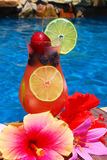 Tropical Summer Drink. Delicious drink with lemon and lime slices and tropical flowers waiting by the side of the pool in the summer Stock Images